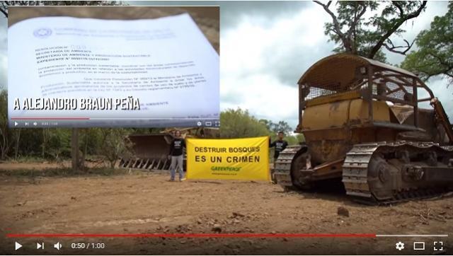 La familia Peña Braun denunciada por violar la ley de Bosques en Salta
