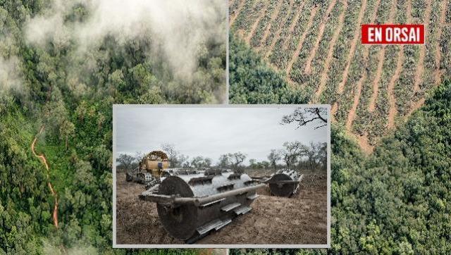 Desmonte indiscriminado: la otra cara del modelo agroexportador