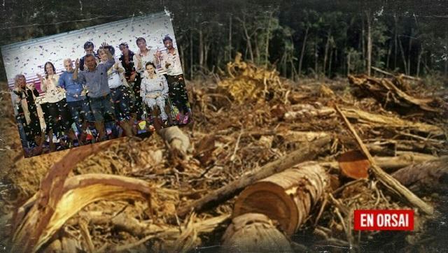 Con Cambiemos en 2018 se deforestó ilegalmente 2 veces la superficie de Buenos Aires