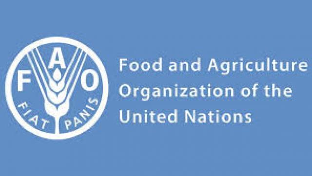 La FAO destaca que Argentina fue uno de los países que más rápido reaccionó a la pandemia