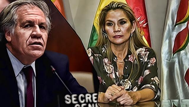 Alberto Fernández realizó una fuerte crítica al titular de la OEA por el golpe en Bolivia
