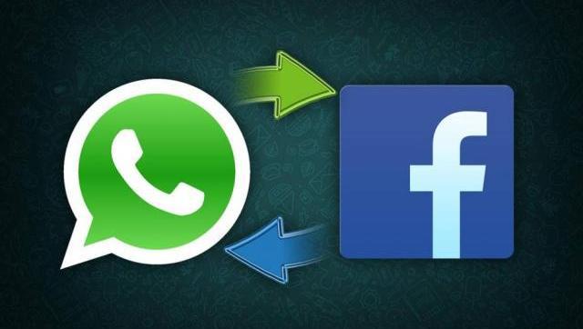 Alemania prohibió por tres meses a Facebook utilizar los datos de WhatsApp