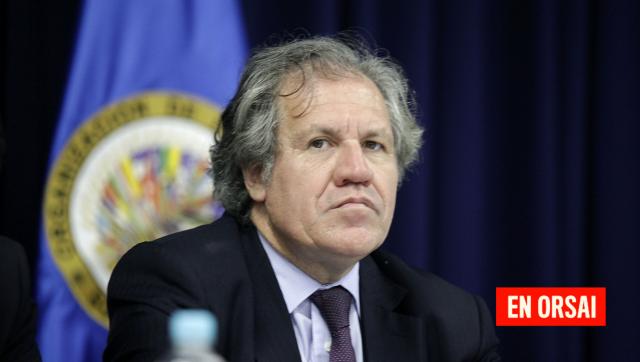 Arispe Maita, Diputada Nacional de Bolivia: