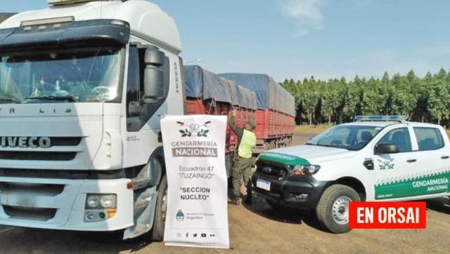 Gendarmería interceptó un convoy de camiones que contrabandeaban 168 toneladas de soja